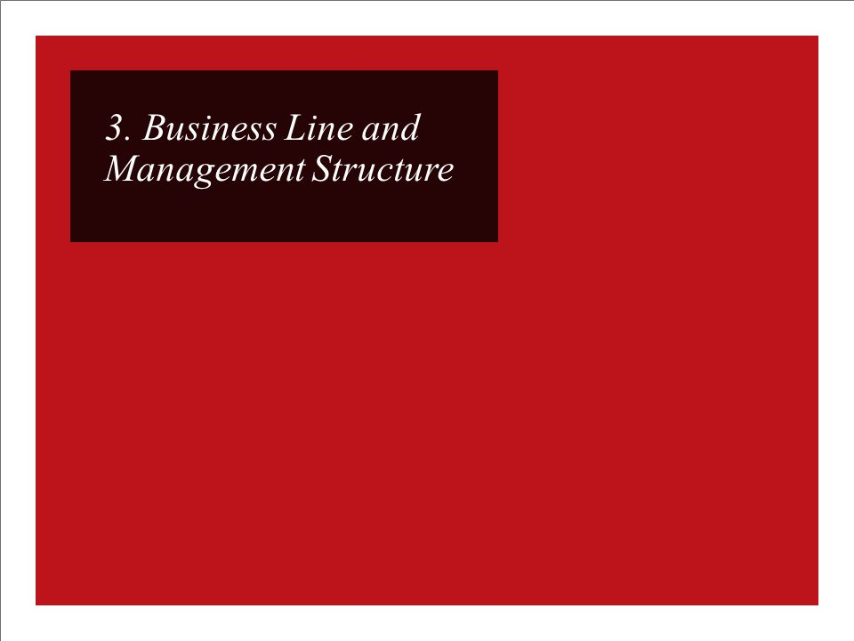 3. Business Line and Management Structure