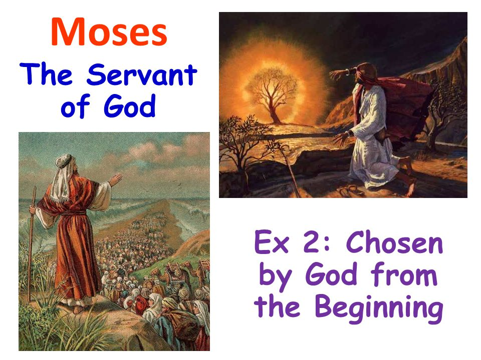 Exodus 2:1-3 1 And a man of the house of Levi went and took as wife a daughter of Levi.