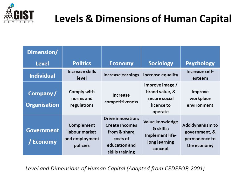 Levels & Dimensions of Human Capital Dimension/ LevelPoliticsEconomySociologyPsychology Individual Increase skills level Increase earningsIncrease equality Increase self- esteem Company / Organisation Comply with norms and regulations Increase competitiveness Improve image / brand value, & secure social licence to operate Improve workplace environment Government / Economy Complement labour market and employment policies Drive innovation; Create incomes from & share costs of education and skills training Value knowledge & skills; Implement life- long learning concept Add dynamism to government, & permanence to the economy Level and Dimensions of Human Capital (Adapted from CEDEFOP, 2001)