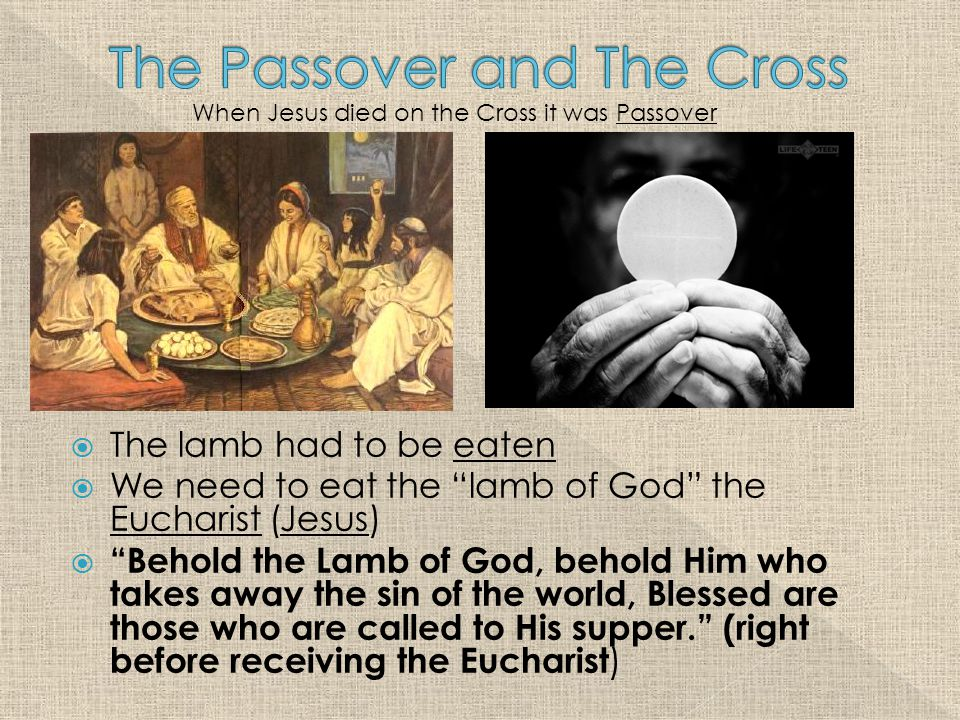 The lamb had to be eaten  We need to eat the lamb of God the Eucharist (Jesus)  Behold the Lamb of God, behold Him who takes away the sin of the world, Blessed are those who are called to His supper. (right before receiving the Eucharist ) When Jesus died on the Cross it was Passover