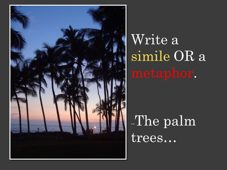 Write a simile OR a metaphor. -- The palm trees…