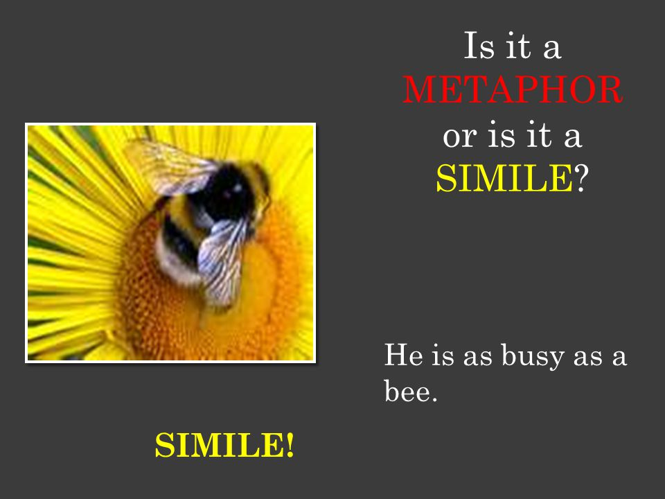 Is it a METAPHOR or is it a SIMILE He is as busy as a bee. SIMILE!