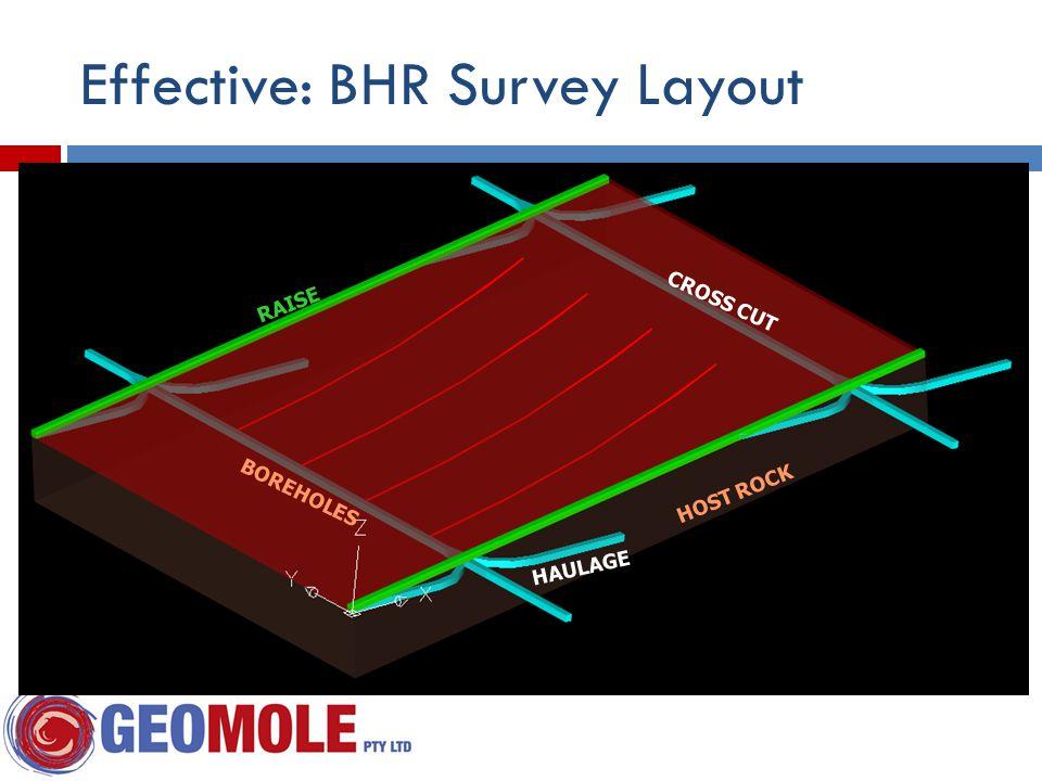 HOST ROCK BOREHOLES RAISE HAULAGE CROSS CUT Effective: BHR Survey Layout