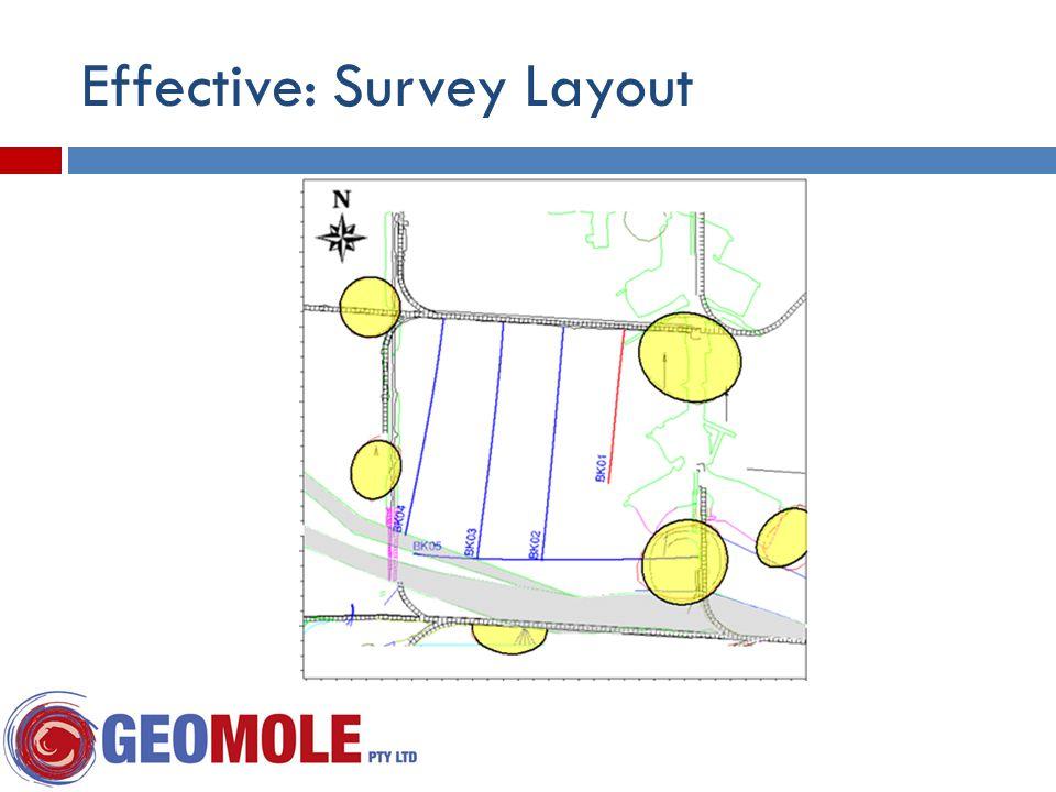 Effective: Survey Layout