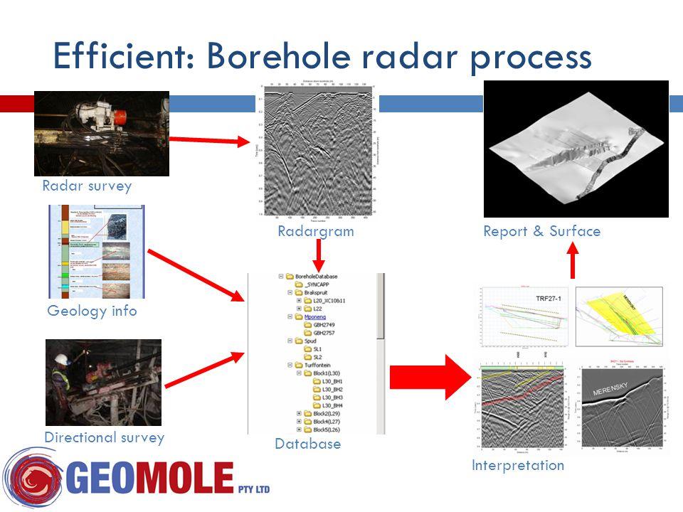 Efficient: Borehole radar process Radar survey Geology info Directional survey Interpretation RadargramReport & Surface Database