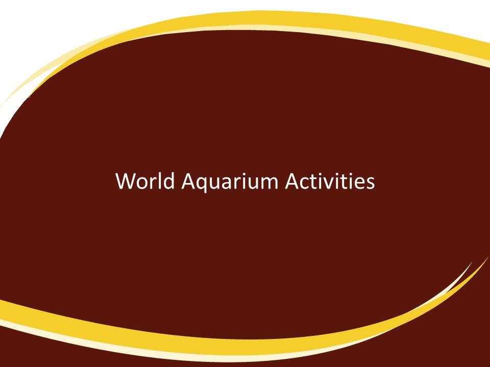 World Aquarium Activities