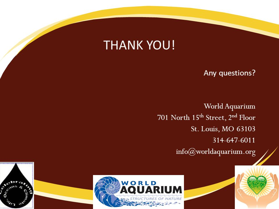 THANK YOU.Any questions. World Aquarium 701 North 15 th Street, 2 nd Floor St.