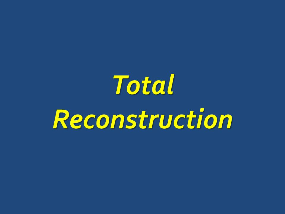 TotalReconstruction