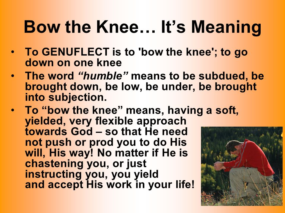"Bow the Knee… It's Meaning To GENUFLECT is to 'bow the knee'; to go down on one knee The word ""humble"" means to be subdued, be brought down, be low, b"