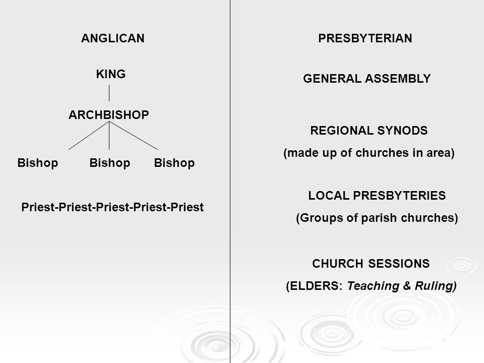ANGLICANPRESBYTERIAN KING GENERAL ASSEMBLY ARCHBISHOP Bishop Bishop Bishop REGIONAL SYNODS (made up of churches in area) LOCAL PRESBYTERIES (Groups of parish churches) CHURCH SESSIONS (ELDERS: Teaching & Ruling) Priest-Priest-Priest-Priest-Priest