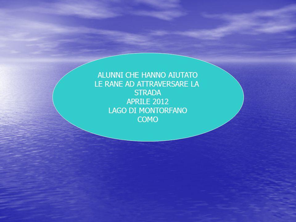 ALUNNI CHE HANNO AIUTATO LE RANE AD ATTRAVERSARE LA STRADA APRILE 2012 LAGO DI MONTORFANO COMO