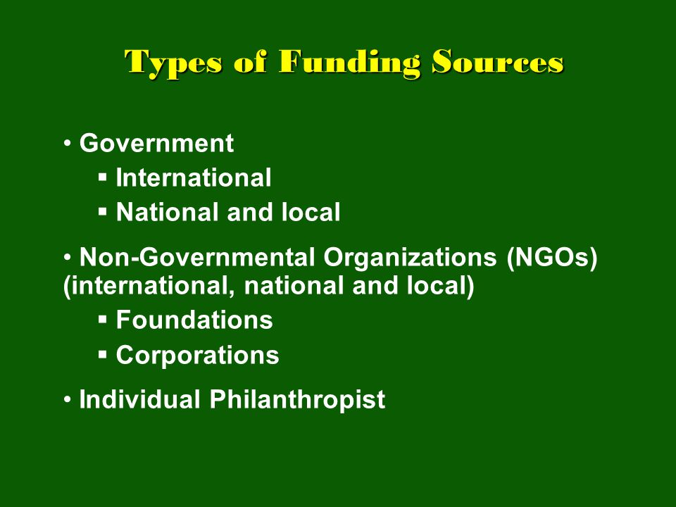 Types of Funding Sources Types of Funding Sources Government  International  National and local Non-Governmental Organizations (NGOs) (international