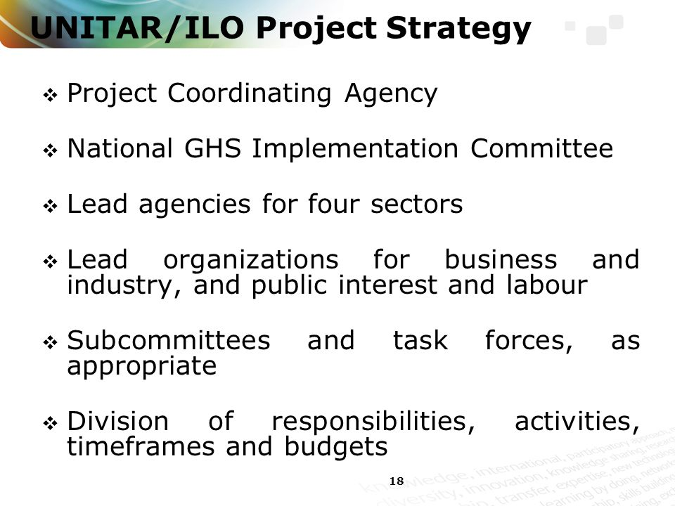 18 UNITAR/ILO Project Strategy  Project Coordinating Agency  National GHS Implementation Committee  Lead agencies for four sectors  Lead organizations for business and industry, and public interest and labour  Subcommittees and task forces, as appropriate  Division of responsibilities, activities, timeframes and budgets