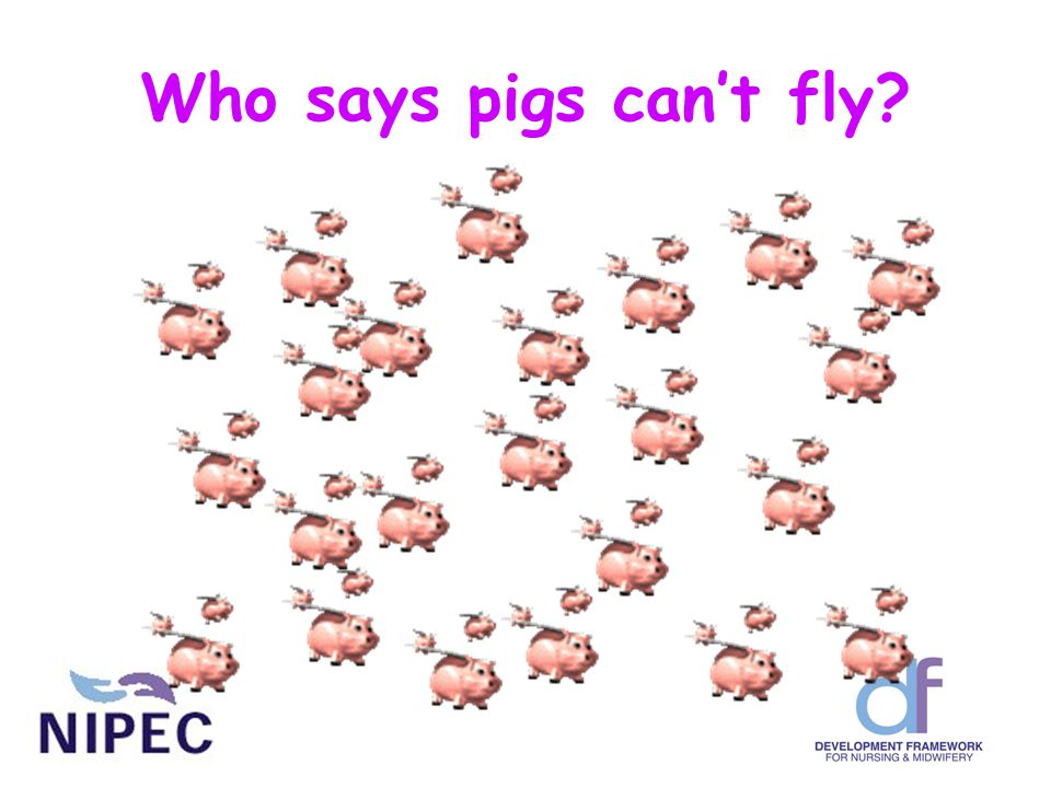 Who says pigs can't fly