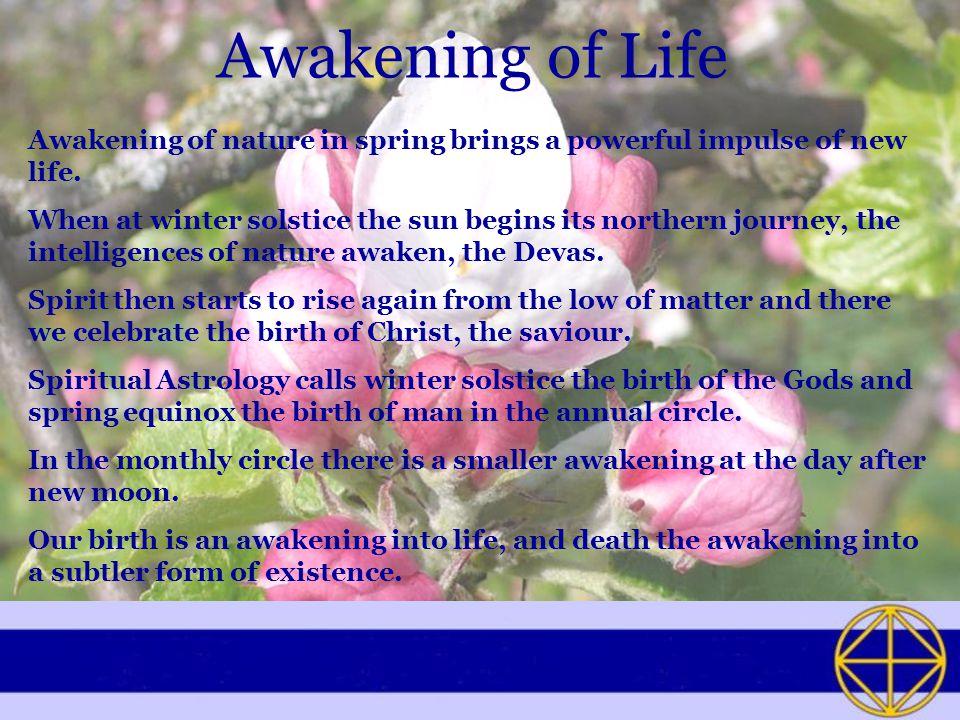 Awakening of Life Awakening of nature in spring brings a powerful impulse of new life.