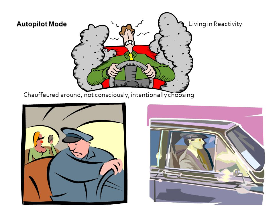 Autopilot Mode Chauffeured around, not consciously, intentionally choosing Living in Reactivity