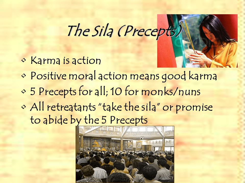 The Sila (Precepts) Karma is action Positive moral action means good karma 5 Precepts for all; 10 for monks/nuns All retreatants take the sila or promise to abide by the 5 Precepts