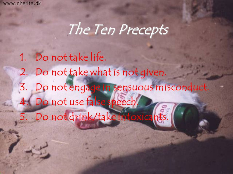 The Ten Precepts 1.Do not take life. 2.Do not take what is not given.