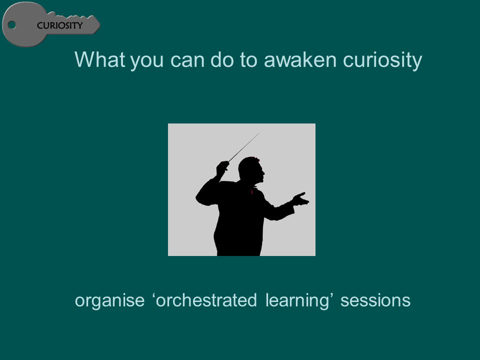 What you can do to awaken curiosity organise 'orchestrated learning' sessions