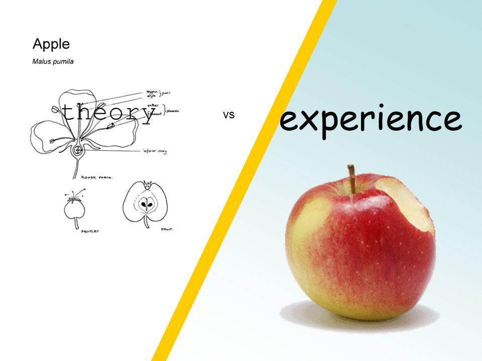 experience vs theory
