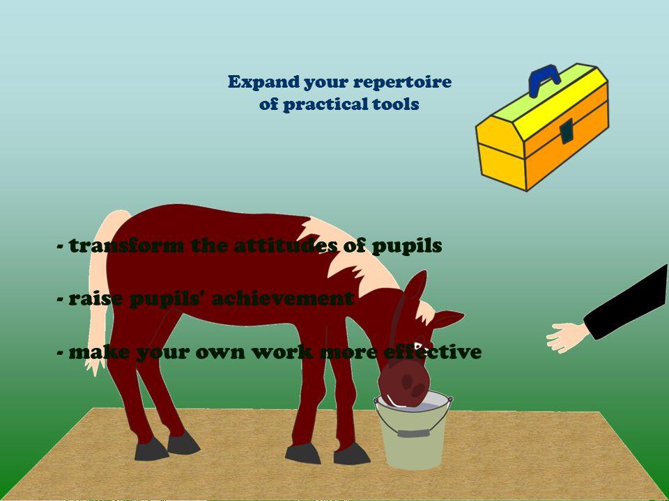 Expand your repertoire of practical tools - transform the attitudes of pupils - raise pupils achievement - make your own work more effective