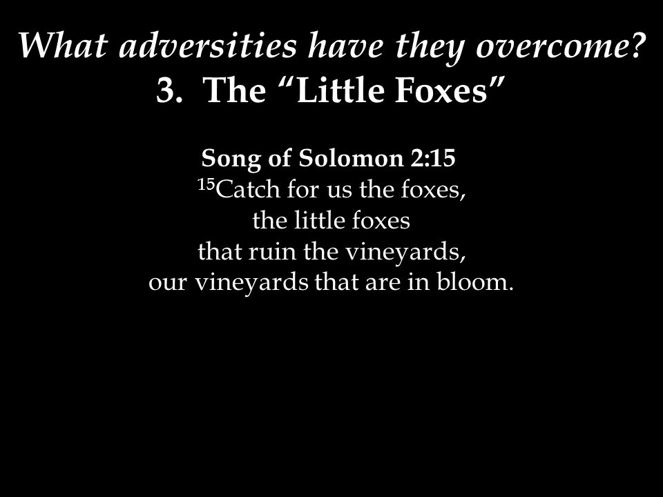 """What adversities have they overcome? 3. The """"Little Foxes"""" Song of Solomon 2:15 15 Catch for us the foxes, the little foxes that ruin the vineyards, o"""