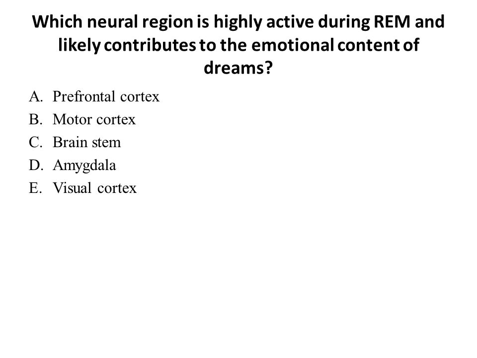 Which neural region is highly active during REM and likely contributes to the emotional content of dreams? A.Prefrontal cortex B.Motor cortex C.Brain
