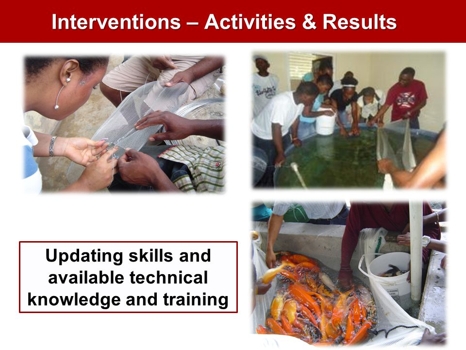 Interventions – Activities & Results Updating skills and available technical knowledge and training