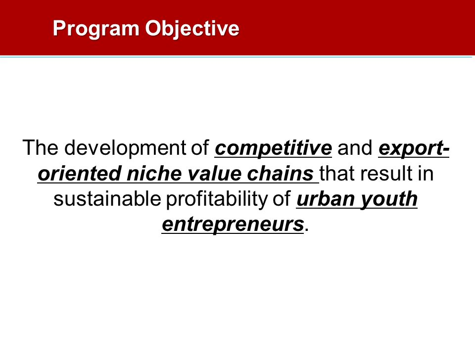 Program Objective The development of competitive and export- oriented niche value chains that result in sustainable profitability of urban youth entrepreneurs.