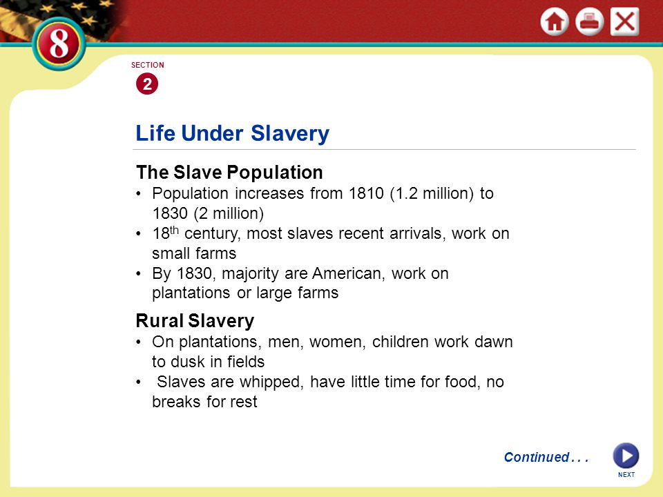Life Under Slavery The Slave Population Population increases from 1810 (1.2 million) to 1830 (2 million) 18 th century, most slaves recent arrivals, w