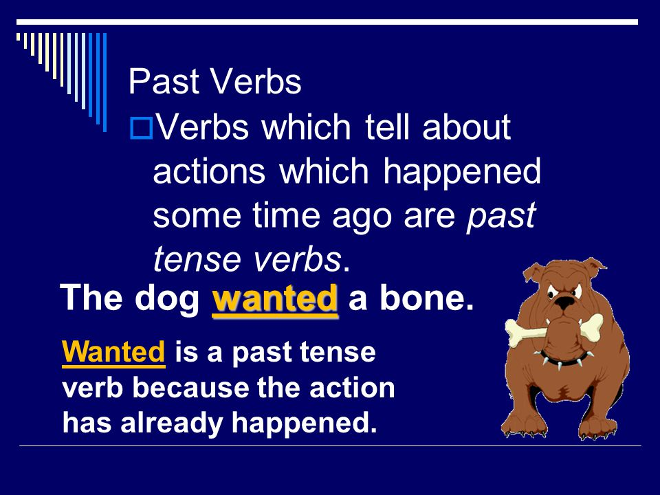 Write a sentence using a verb in the present tense.