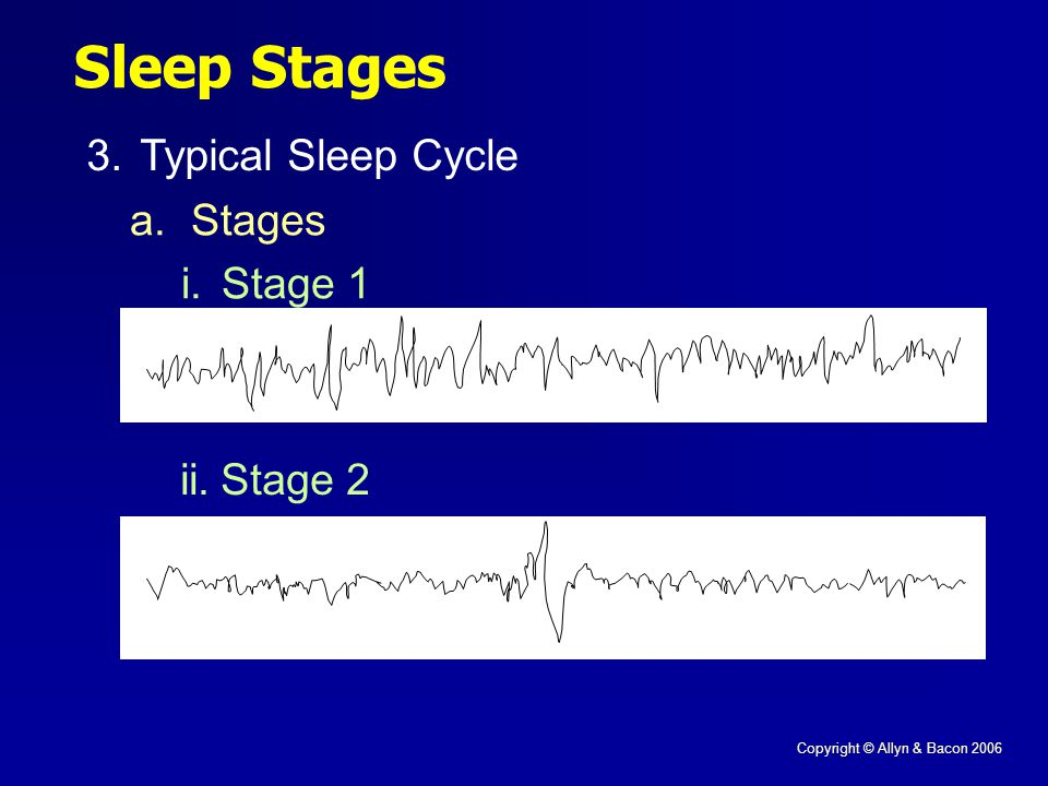 Copyright © Allyn & Bacon 2006 Sleep Stages 3.Typical Sleep Cycle a. Stages i.Stage 1 ii.Stage 2