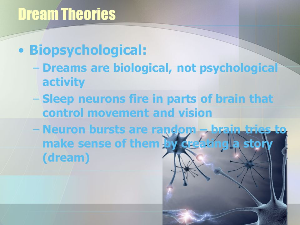 Dream Theories Biopsychological: –Dreams are biological, not psychological activity –Sleep neurons fire in parts of brain that control movement and vi