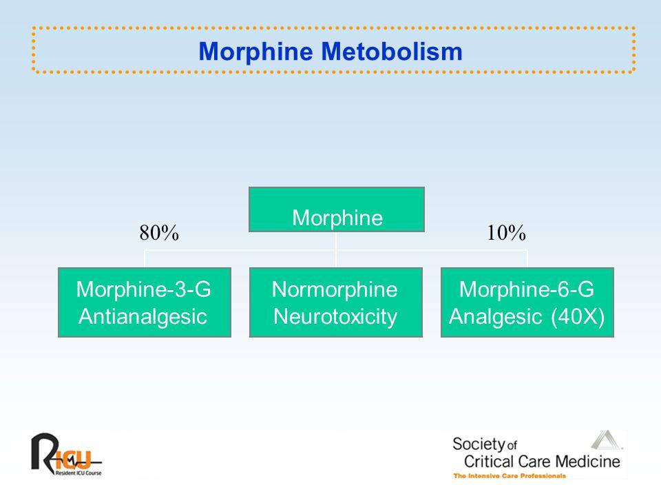 Morphine Metobolism 80%10% Morphine-3-G Antianalgesic Normorphine Neurotoxicity Morphine-6-G Analgesic (40X) Morphine