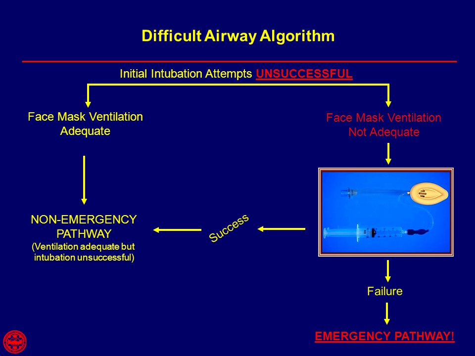 Difficult Airway Algorithm Face Mask Ventilation Adequate Face Mask Ventilation Not Adequate NON-EMERGENCY PATHWAY (Ventilation adequate but intubation unsuccessful) EMERGENCY PATHWAY.