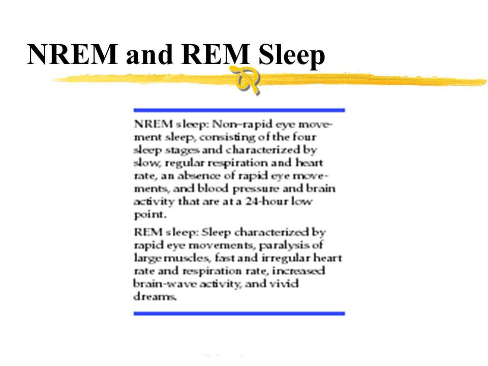 Copyright © Allyn & Bacon 2002 NREM and REM Sleep 