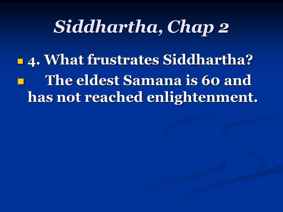Siddhartha, Chap 2 4. What frustrates Siddhartha.