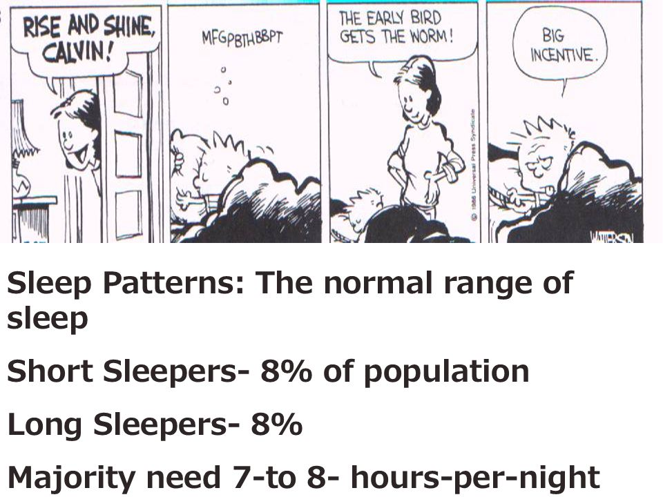 Sleep Patterns: The normal range of sleep Short Sleepers- 8% of population Long Sleepers- 8% Majority need 7-to 8- hours-per-night