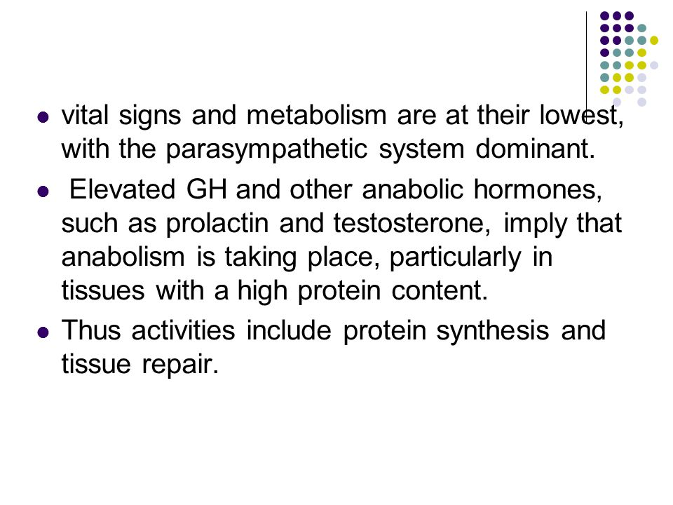 vital signs and metabolism are at their lowest, with the parasympathetic system dominant. Elevated GH and other anabolic hormones, such as prolactin a