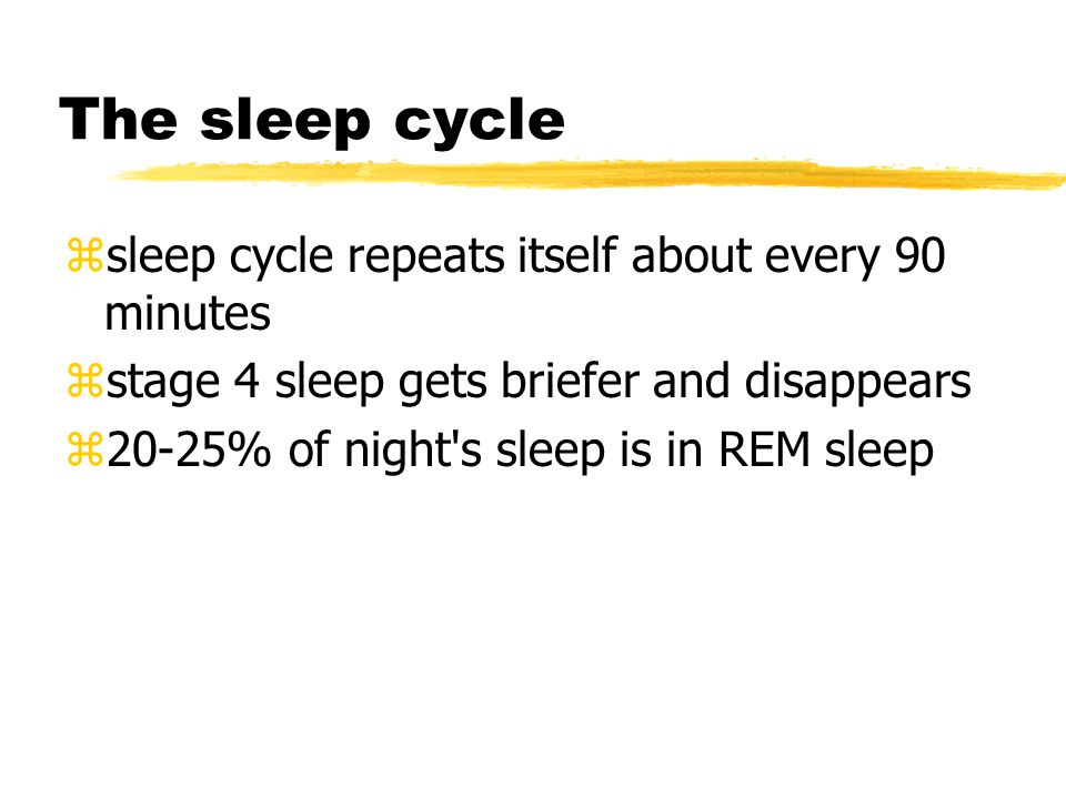 The sleep cycle zsleep cycle repeats itself about every 90 minutes zstage 4 sleep gets briefer and disappears z20-25% of night s sleep is in REM sleep
