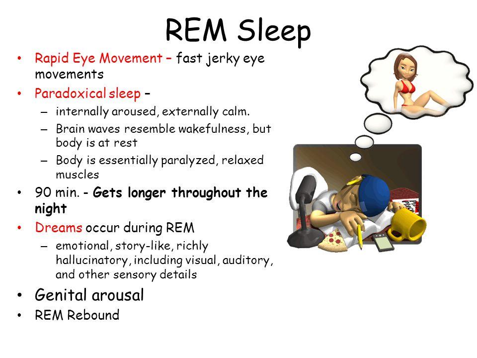 REM Sleep Rapid Eye Movement – fast jerky eye movements Paradoxical sleep – – internally aroused, externally calm. – Brain waves resemble wakefulness,