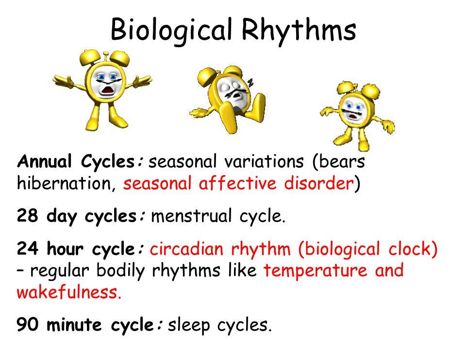 Sleep Apnea A person stops breathing during their sleep.