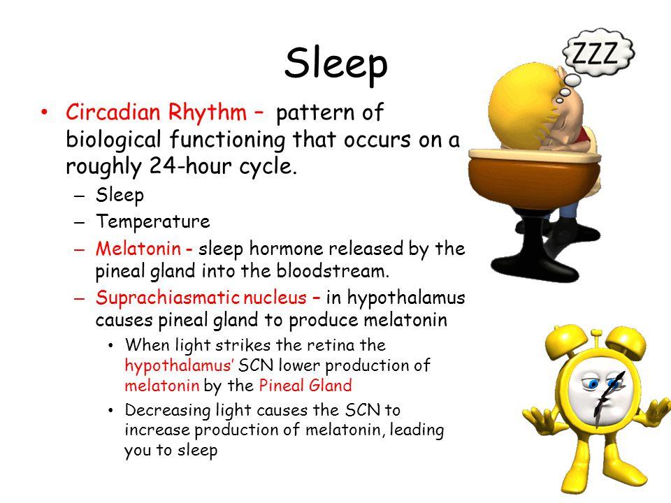 Sleep Circadian Rhythm – pattern of biological functioning that occurs on a roughly 24-hour cycle. – Sleep – Temperature – Melatonin - sleep hormone r