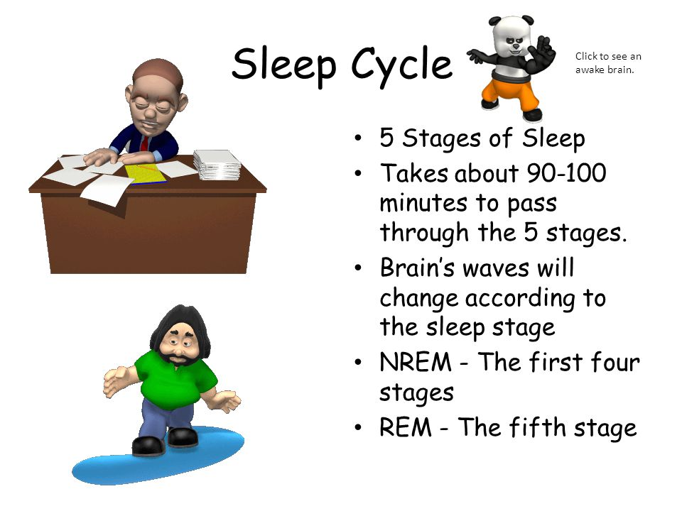 Sleep Cycle 5 Stages of Sleep Takes about 90-100 minutes to pass through the 5 stages. Brain's waves will change according to the sleep stage NREM - T