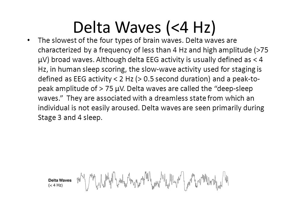 Delta Waves (<4 Hz) The slowest of the four types of brain waves.