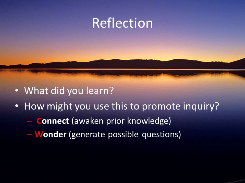 Reflection What did you learn. How might you use this to promote inquiry.