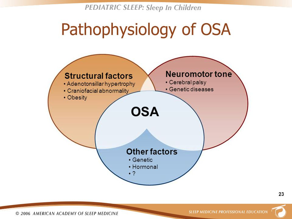 23 Pathophysiology of OSA Neuromotor tone Cerebral palsy Genetic diseases Structural factors Adenotonsillar hypertrophy Craniofacial abnormality Obesity Other factors Genetic Hormonal .