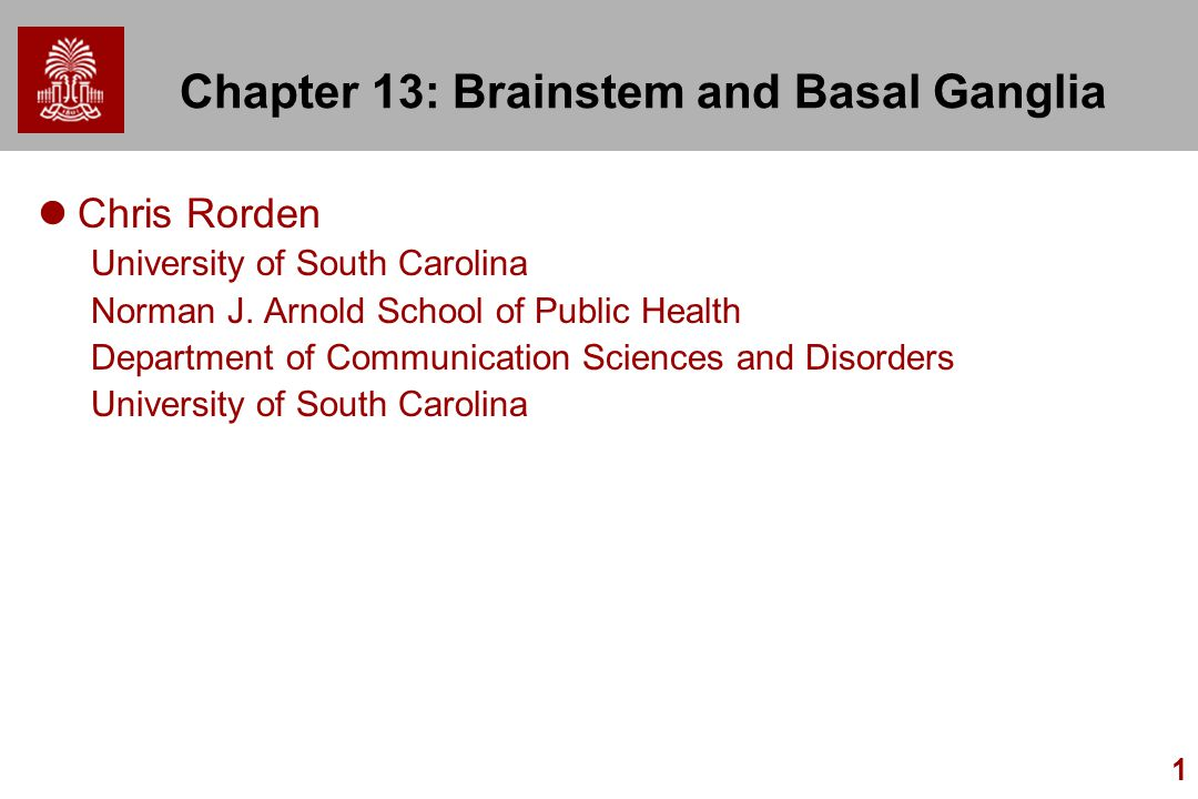 1 Chapter 13: Brainstem and Basal Ganglia Chris Rorden University of South Carolina Norman J.