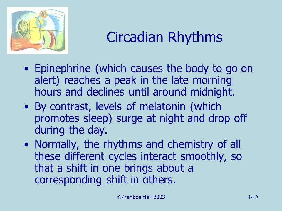 ©Prentice Hall 20034-10 Circadian Rhythms Epinephrine (which causes the body to go on alert) reaches a peak in the late morning hours and declines until around midnight.