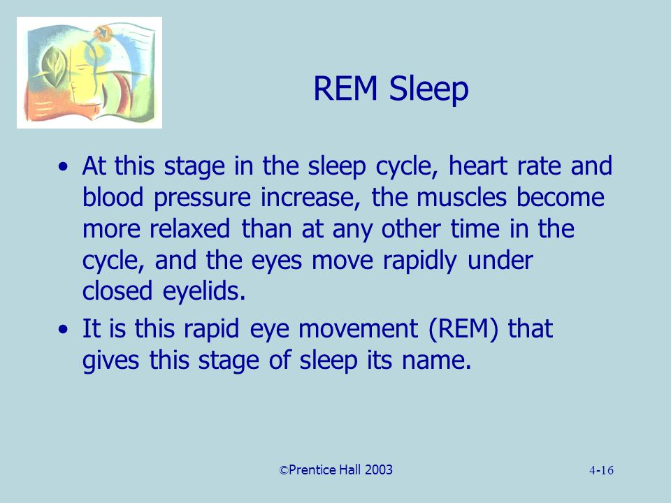 ©Prentice Hall 20034-16 REM Sleep At this stage in the sleep cycle, heart rate and blood pressure increase, the muscles become more relaxed than at any other time in the cycle, and the eyes move rapidly under closed eyelids.